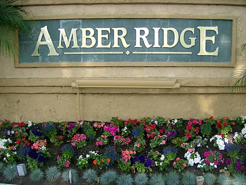 Welcome to Amber Ridge