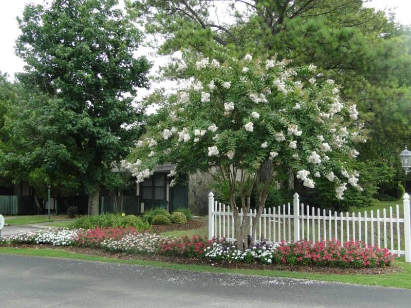 Serene grounds