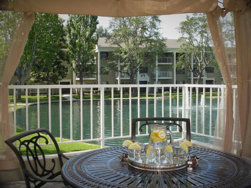 Poolside Lakeview