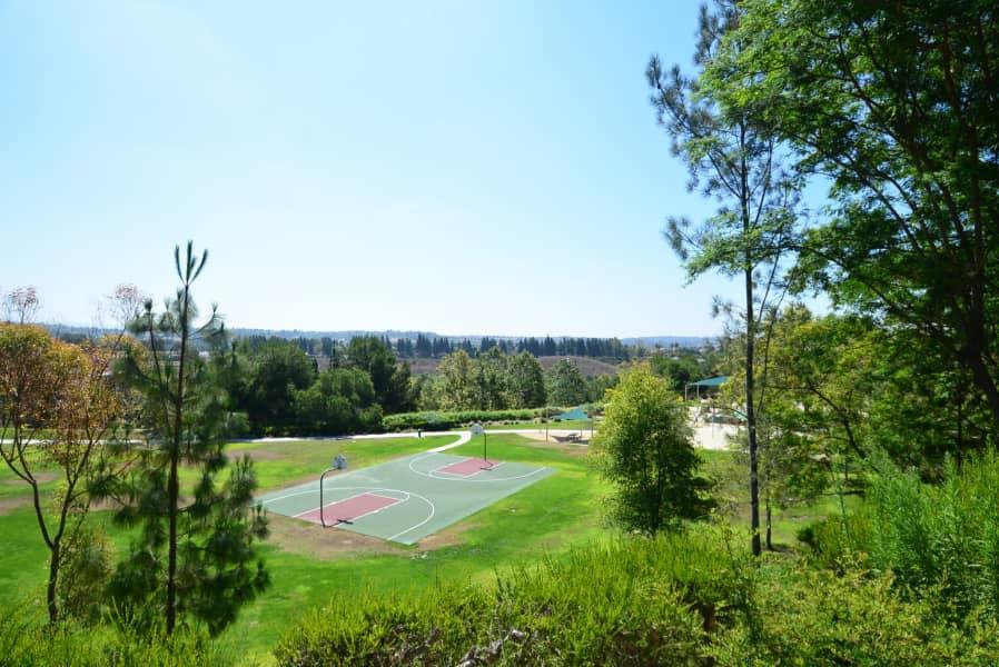 Community Park Access