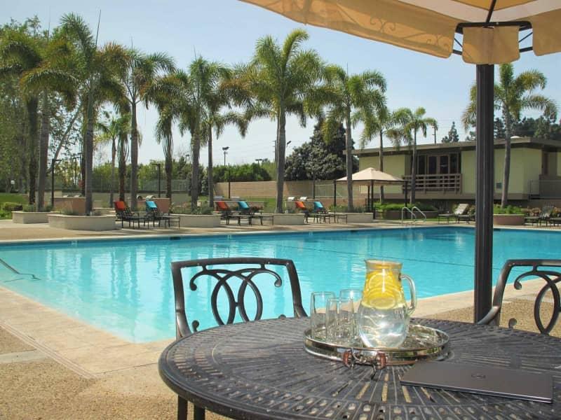 Complimentary Wi-Fi Pool Area
