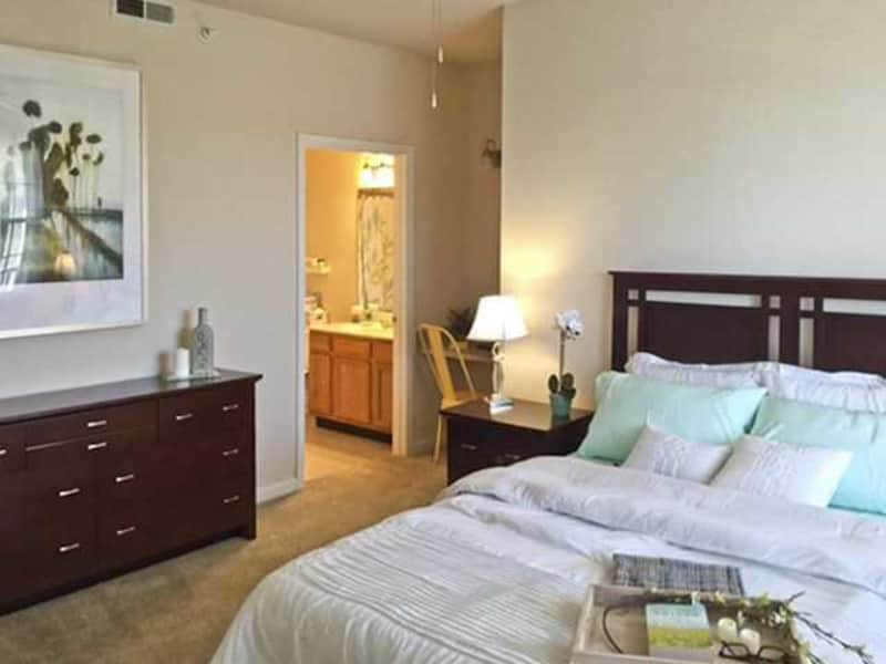 Bedrooms Designed for Big Furniture