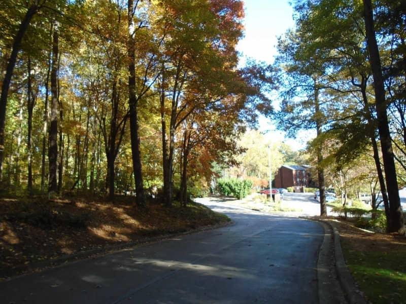 Autumn on Wood Aisle at Wildwoods