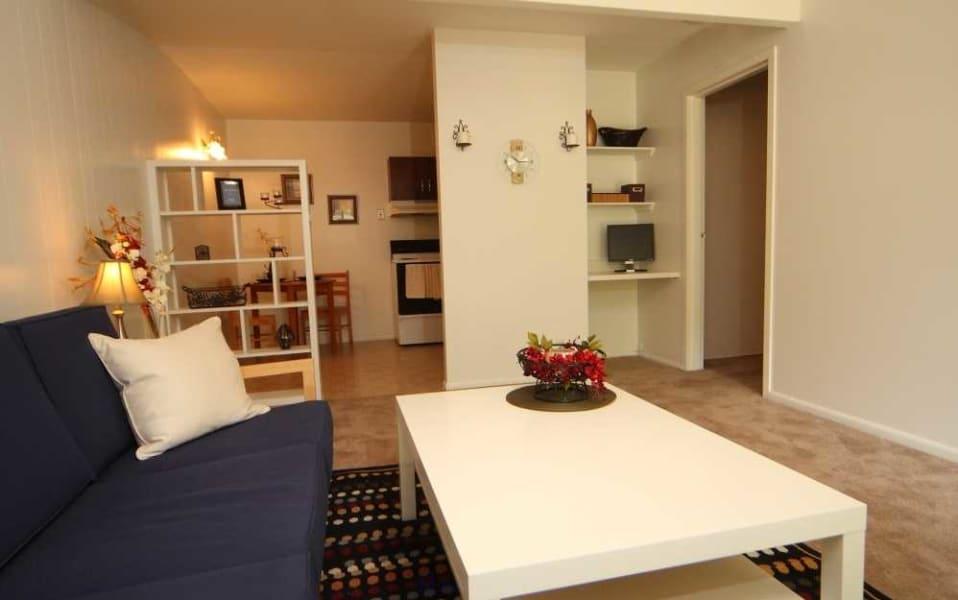 Basic One Bedroom Living Room
