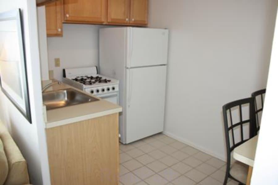 Standard Studio - kitchen