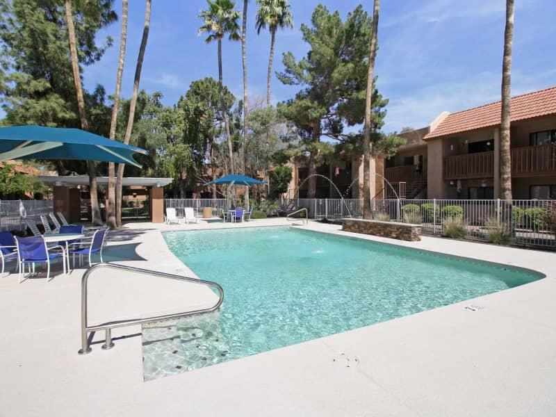 Amazing Summer Splash Pool!