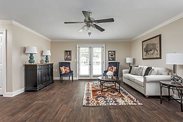 Open Concept Renovated Living  Room - Live Oak Trace Apartments