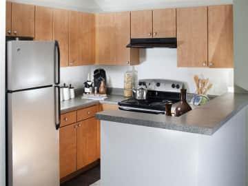Modern kitchens with sleek black & silver appliances