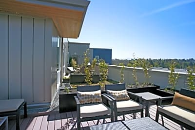 Kavela Apartments - Seattle, Washington 98115