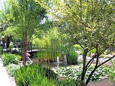 Willow Pond Apartments - Sunnyvale, California 94086