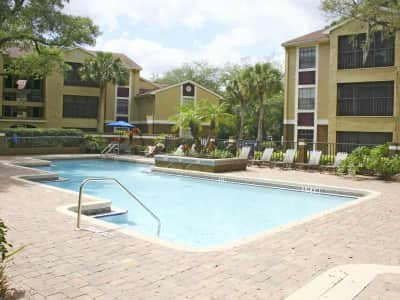 Apartments For Rent In Tampa Fl On Bruce B Downs