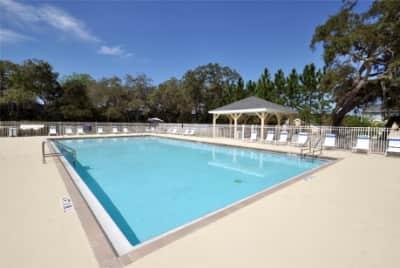 Savannah Cove Apartments Lauren Lane Tarpon Springs Fl Apartments For Rent