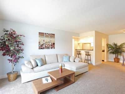 Lake Jasmine Apartments Orlando Fl Reviews