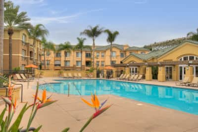 Apartments For Rent In Scripps Ranch
