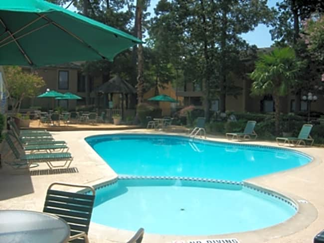 Elm Grove Apartments - Kingwood, Texas 77339