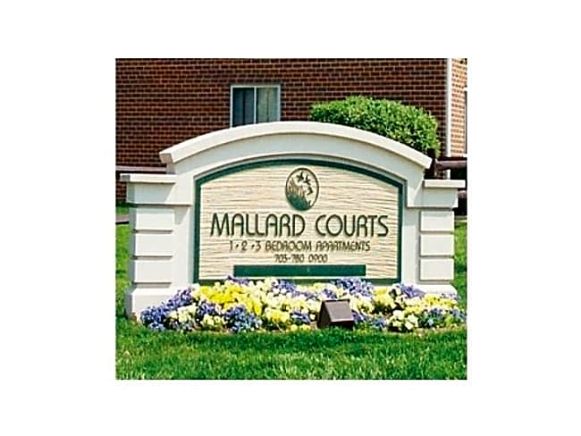 Mallard Courts Apartments - Alexandria, Virginia 22309