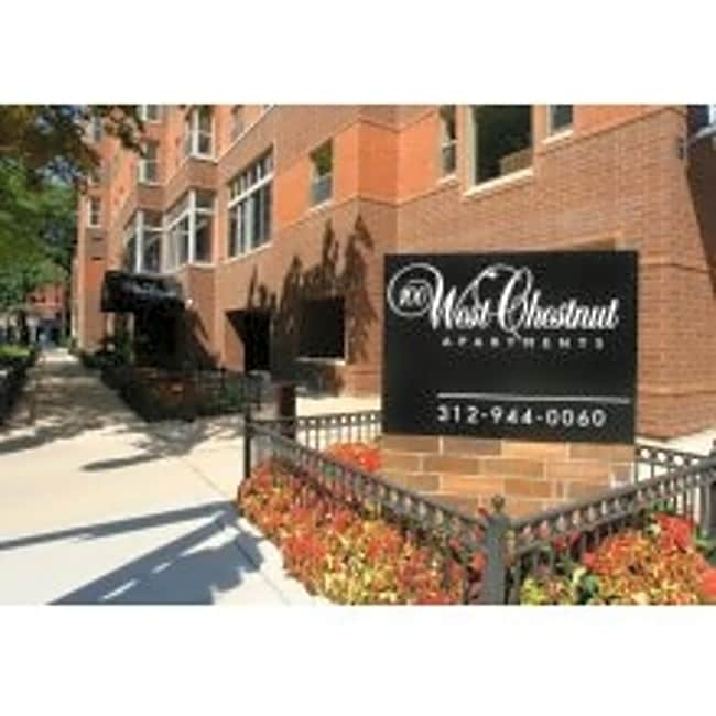 100 West Chestnut Apartments - Chicago, Illinois 60610