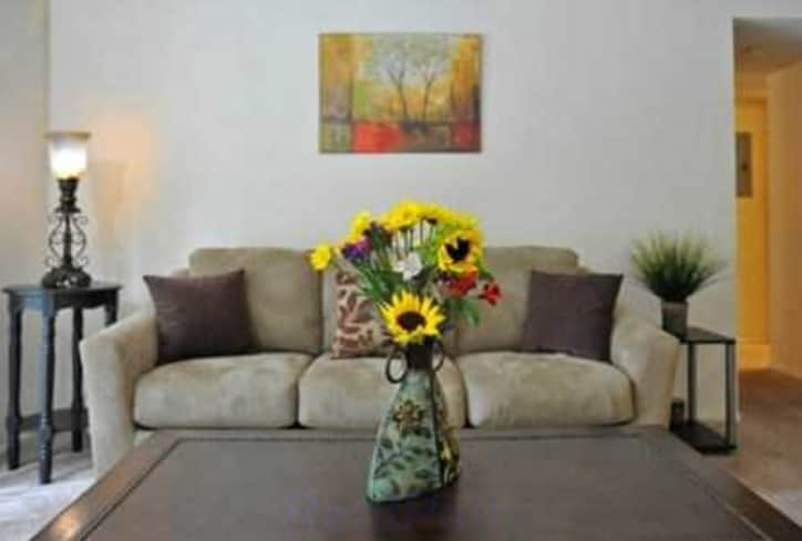 1 Bedroom Columbia Apartments For From 400 Sc