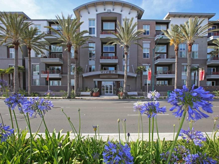 Vivere Lofts Apartments Anaheim Ca 92805 Apartments