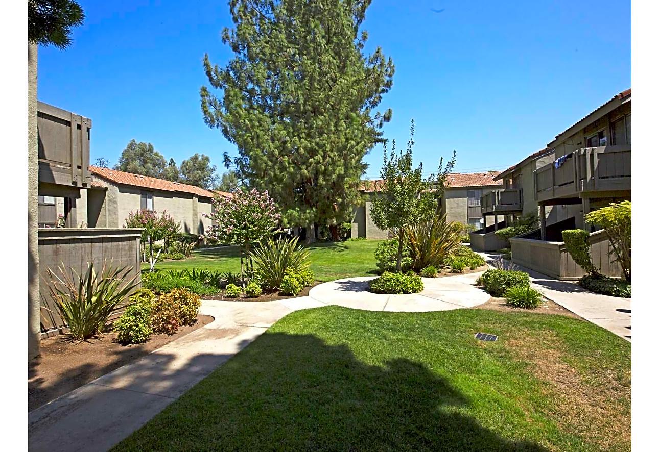 Cedar Springs Apartments - Fresno, CA 93726