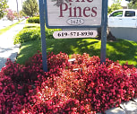 The Pines, Campo, CA