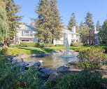 Cotton Wood Apartments, Dougherty Valley, San Ramon, CA