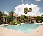 Pool, Springs At Continental Ranch