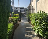 Tabor, Palms, Los Angeles, CA