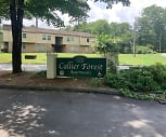 Callier Forest Apartments, Rome, GA