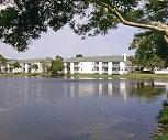Spring Lake Village, University of South Florida Saint Petersburg, FL