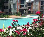 Pool, The Venetian on Ella