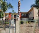Base Palm, Serrano Middle School, Highland, CA