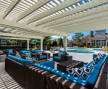 Pool, The Ashborough Apartments
