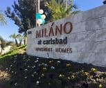Elan Milano, Oceanside, CA