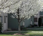 Aspen Woods Town Homes Apartments, Hollsopple, PA