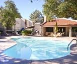 Pool, Saguaro Villas