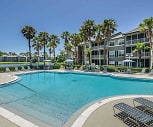 Pool, Ocean Park Of Ponte Vedra