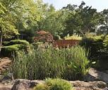 Landscaping, The Park at Morella