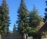 Cabernet Apartments, Vista Preparatory Academy, Red Bluff, CA