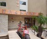 Tremont Luxury Condominiums, Hyde Park, Los Angeles, CA