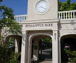 Eucalyptus Park, Hyde Park, Los Angeles, CA