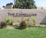 The Camellias, Casa Loma Elementary School, Bakersfield, CA