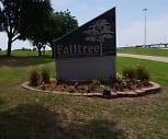 Falltree, Cannaday Elementary School, Mesquite, TX