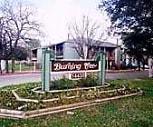 Burning Tree, 78247, TX