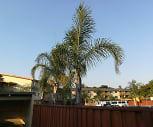 Terrace Capri, Hawes Community School, Redwood City, CA
