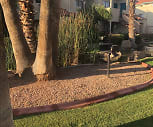 Crystal Springs, Yucca, Glendale, AZ