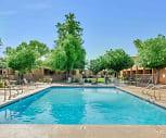 Pool, Modern on Gilbert