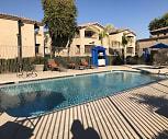 Citra, Cholla, Glendale, AZ