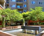 Courtyard, AMLI at Bellevue Park