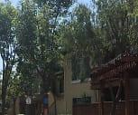 Blossom River, Castillero Middle School, San Jose, CA